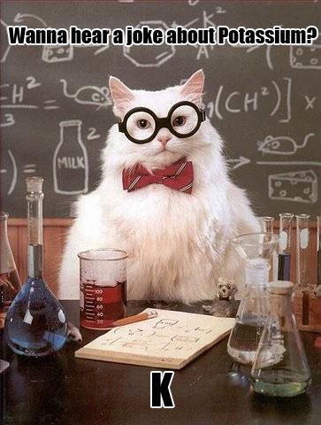 funny-teacher-cat-chemistry-joke