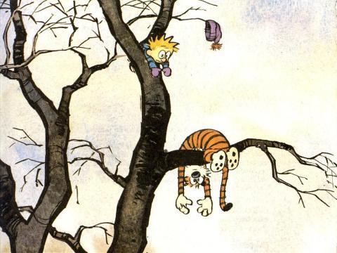 fallen-in-a-tree-calvin--26-hobbes-318679_1024_768