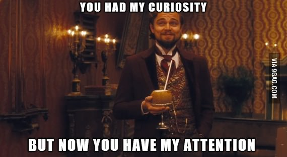 You had my curiousity
