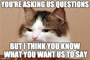 your asking us questions